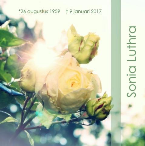 schermafbeelding-2017-01-16-om-23-17-06